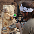 David Robinson, Chainsaw Carving